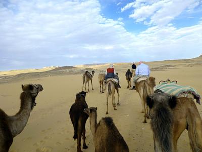 08 Camel Ride080