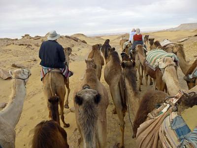 08 Camel Ride082