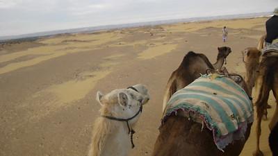 08 Camel Ride077