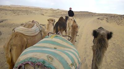 08 Camel Ride075