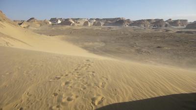 13 White Desert165