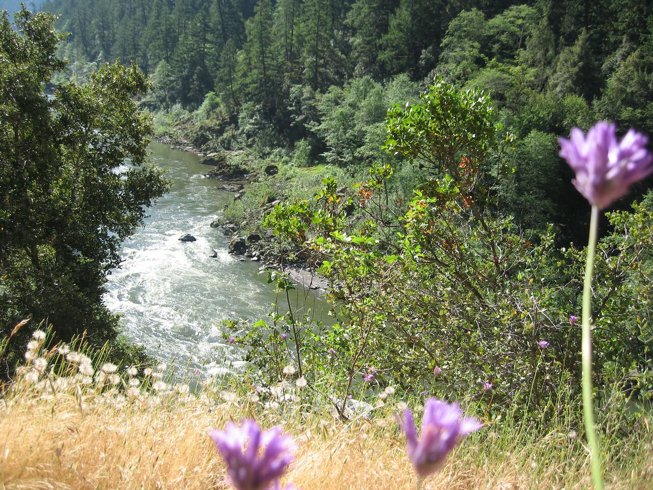 Rogue River Panoramabob 034