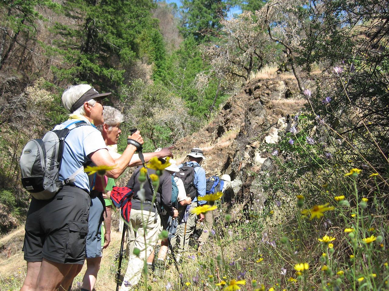 Rogue River Panoramabob 060