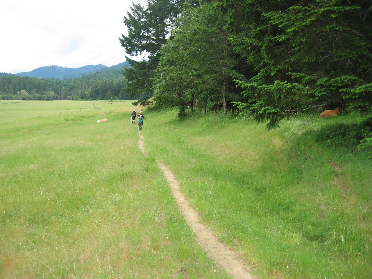 Rogue River Panoramabob 119