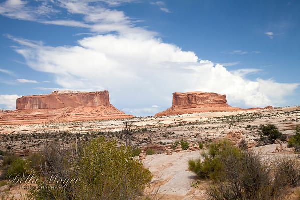 Day 7 Canyonlands National Park