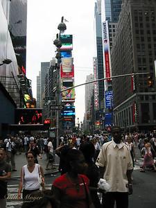 NYC 2002 (16)