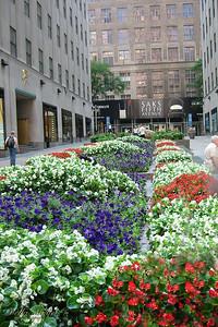 NYC 2002 (7)