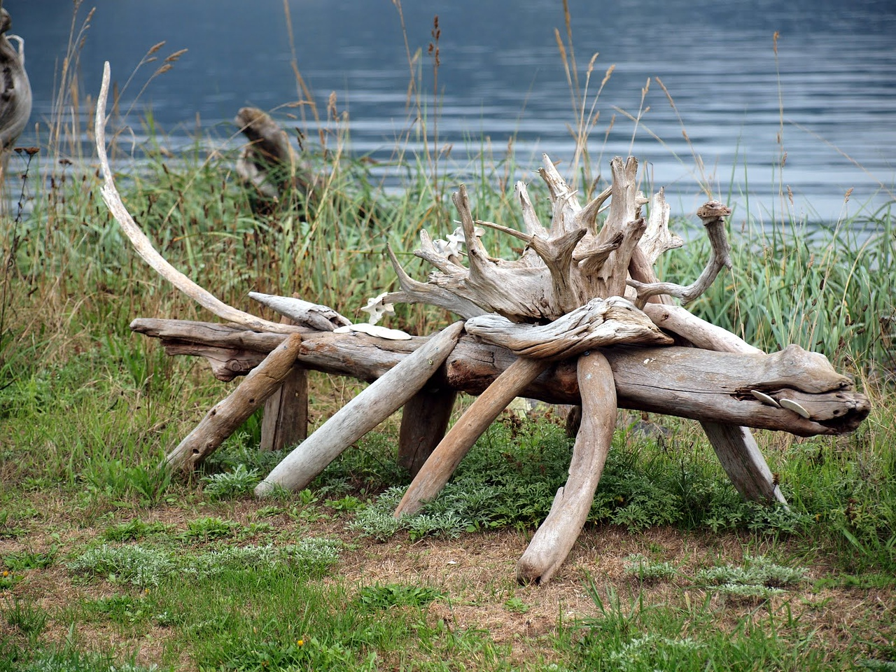 Driftwood critters