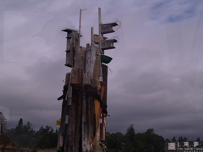 Interesting bird houses in the harbor