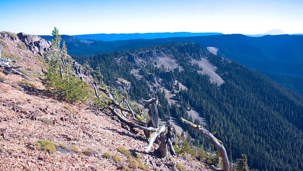 Timberwolf summit