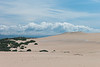 Rancho Guadalupe Dunes Preserve County Park
