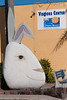 The famous Pismo clam rendered as a rabbit?
