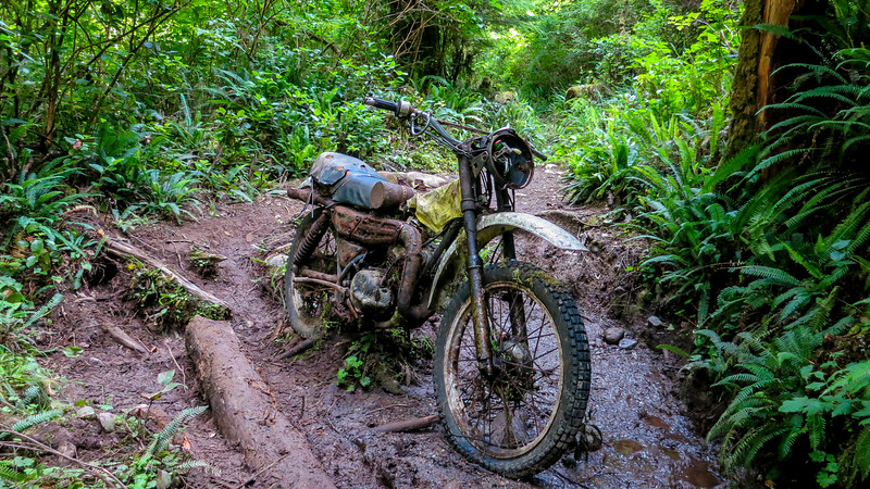 Suzuki motorcycle on trail