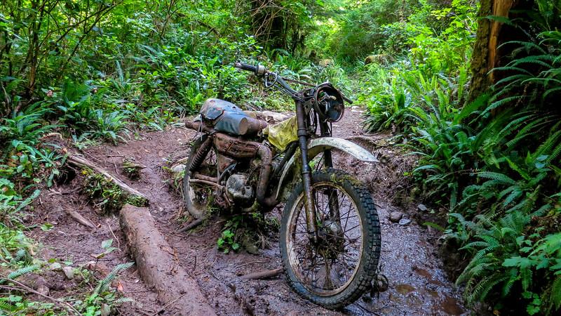 Suzuki motorcycle on trail