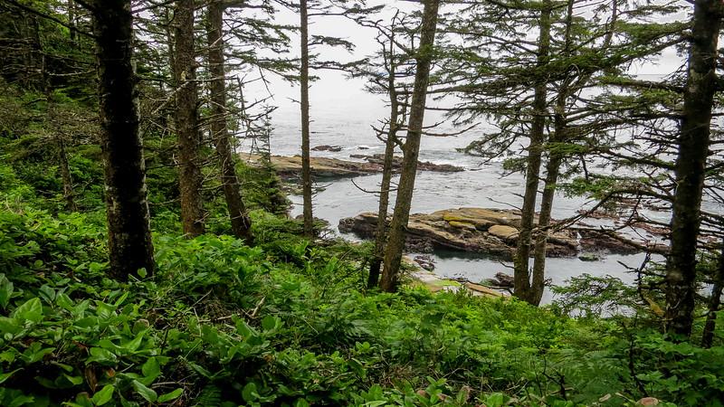 Trail with ocean vu