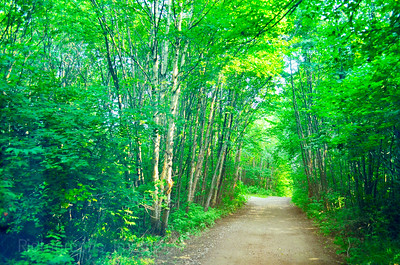 August 2018, Less Traveled Road, 222 (236)