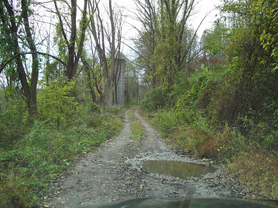 Road can get downright rustic in places.