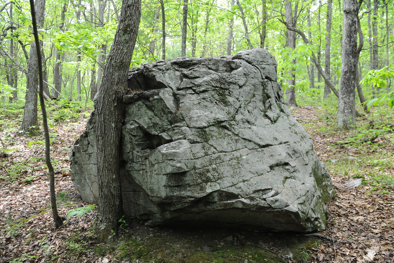 Sentinel Rock, which marked one of the boundaries of where the Minisink battle took place.