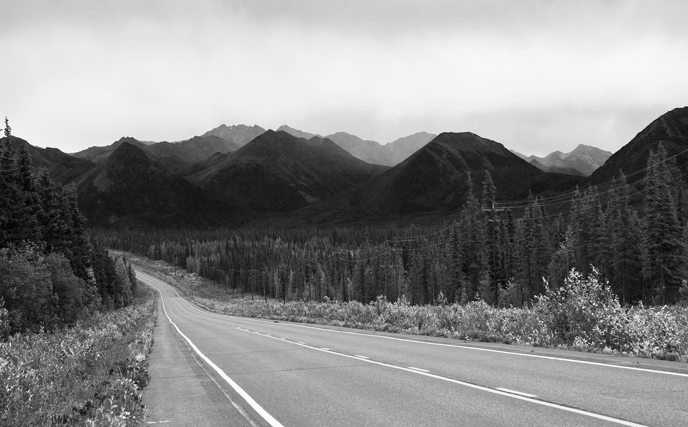 In black and white the roadside flowers don't distract from the layers of mountains ahead. Alaska, 2009.