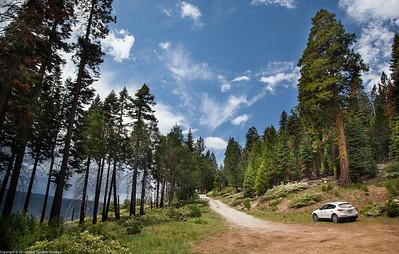 Tanglefoot Canyon Trail