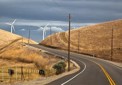 Wind turbines at Altamont pass