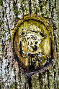 """""""Enchanted Forest"""" Tom Rhodes Tree Carving Trail - Warsaw, Virginia"""