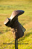 Cowboy Boot on Fencepost, Juneau County, Wisconsin
