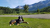 Resting at Mountain Shadow RV Park by the Cassiar Highway