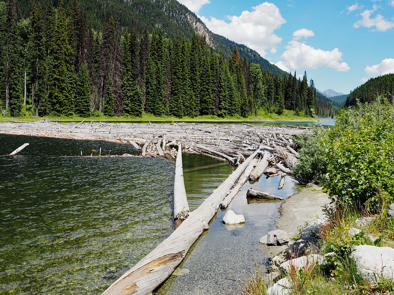 Log jam in Duffy Lake