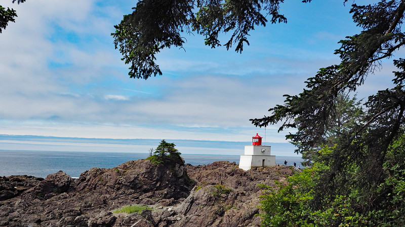 Flowers and scenes along the Wild Pacific Trail