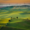 Another view from Steptoe Butte - Palouse region, WA
