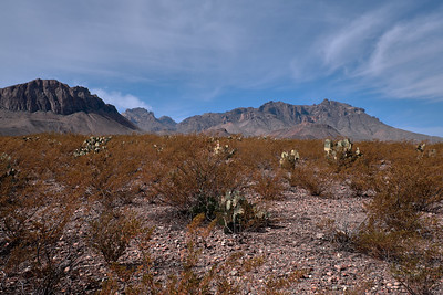 Big Bend National Park, Texas, 2020 12