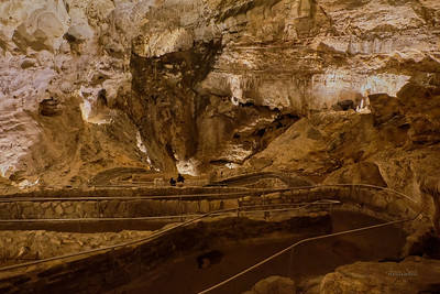Carlsbad Caverns National Park, New Mexico 2020 15