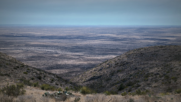 Chihuahuan Desert, New Mexico 2020 1