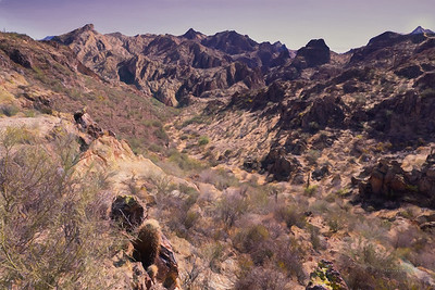 Superstition Mountain National Park, Phoenix, Arizona 2020 14