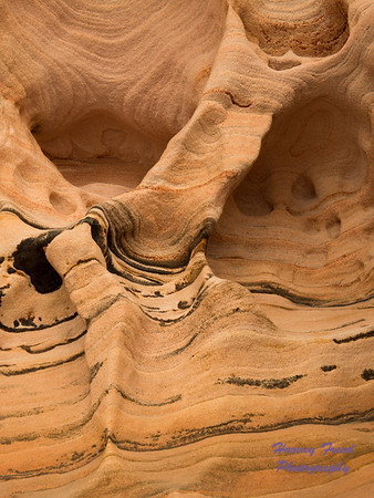 Sandstone, Zion National Park