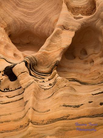 Sandstone, Zion National Park