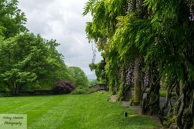 Biltmore Estate Gardens 3