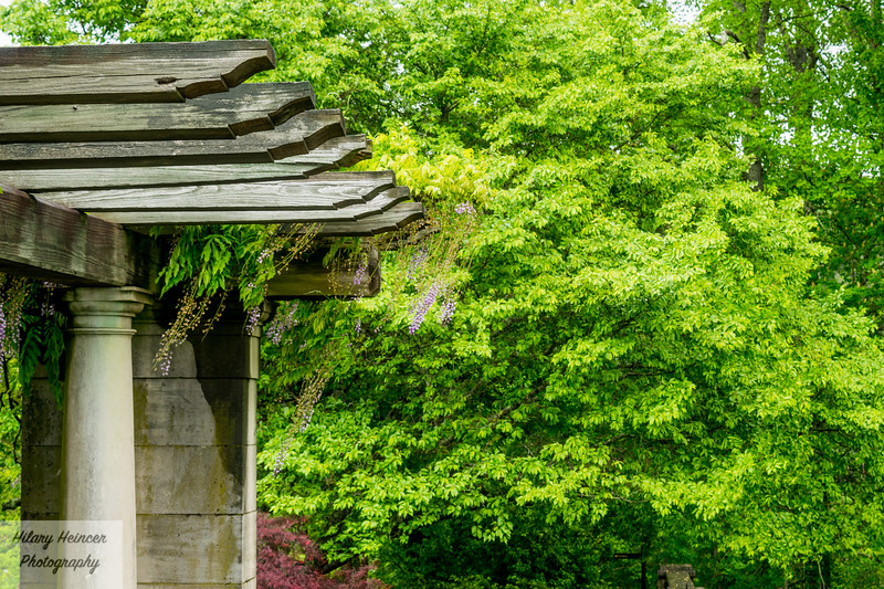 Biltmore Estate Gardens 1