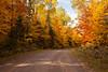 Fall Color Road Scene, Ashland County, Wisconsin