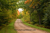 Autumn Road Scene, Oneida County, Wisconsin