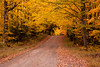 Fall Color Road Scene, Iron County, Wisconsin