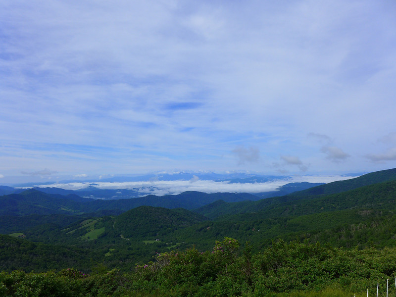 Views into North Carolina from Roan Mountain.
