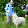 """Jim and Bigdog getting ready to head up to Roan Mountain with the group of goats who will live on Roan Mountain through the summer.  <b><u><a href=""""http://baatany.org/"""">More info on this project here</a></u></b>"""