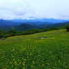 Views into North Carolina from Engine Gap on Roan Mountain.