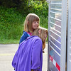 "Sneak Peek ... these two youngsters were peeking into the trailer that brought the goats up to Roan Mountain from their winter home in Shady Valley, TN.  <a href=""http://baatany.org/"">Please see this webpage</a> for more info."