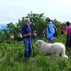 "Todd, Jim, and Bigdog, near Jane Bald on Roan Mountain.  <a href=""http://baatany.org/"">Please see this webpage</a> for more info."
