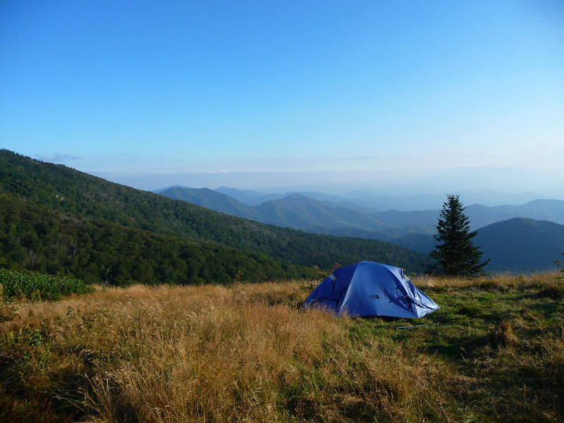 My campsite on Roan Mountain