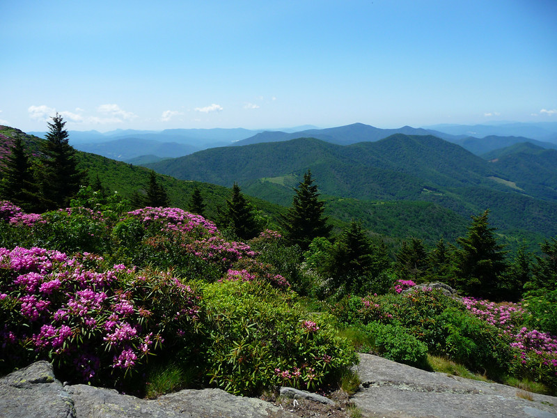 View from Grassy Ridge Bald