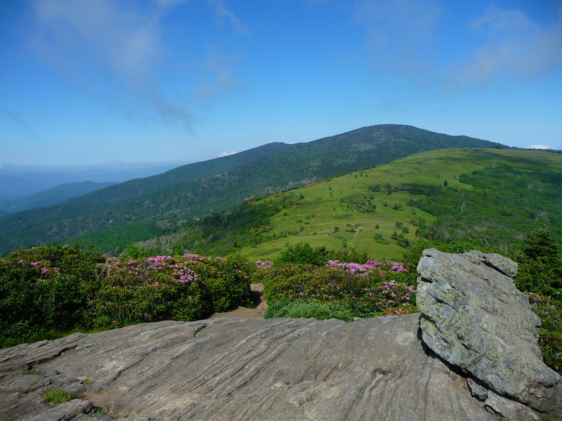 View from Jane Bald